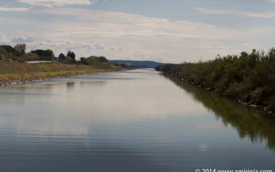 the Canal Du Rhone