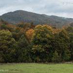 Kirklarli-Landscape_012