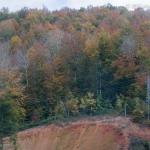 Kirklarli-Landscape_023