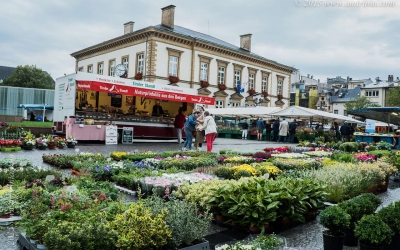 LuxembourgGlimpse_008