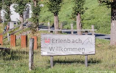 Erlenbach_001