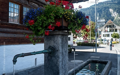 Interlaken_029