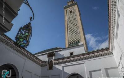 Fez Medina_0080