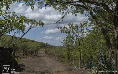 Cerro Negro_0004