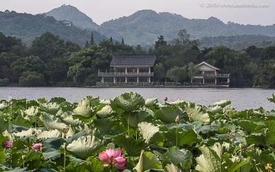 hangzhou_022