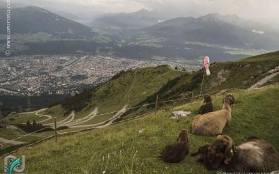 InnsbruckLandscapes_022