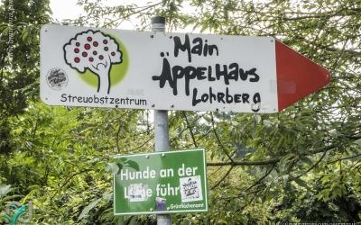 Lohrberg (Frankfurt)_0007
